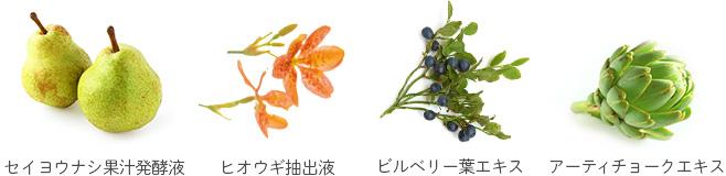 セイヨウナシ果汁発酵液 ヒオウギ抽出液 ビルベリー葉エキス アーティチョークエキス