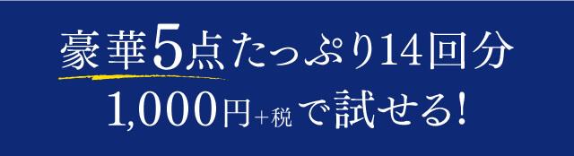 豪華5点たっぷり14回分 1,000円+税で試せる!