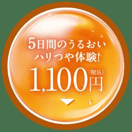 5日間のうるおいハリつや体験 1,100円(税込)