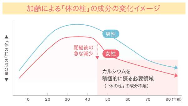 加齢による「体の柱」の成分の変化イメージ